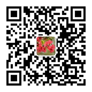mmqrcode1551663450731.png
