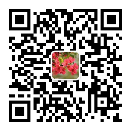 mmqrcode1571829029823.png